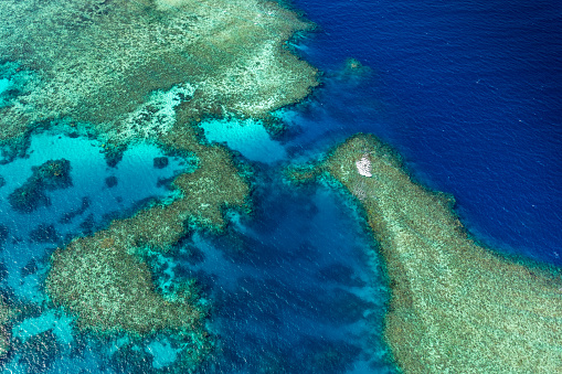 The Nature Conservancy「Aerial photography of the Great Barrier Reef」:スマホ壁紙(14)
