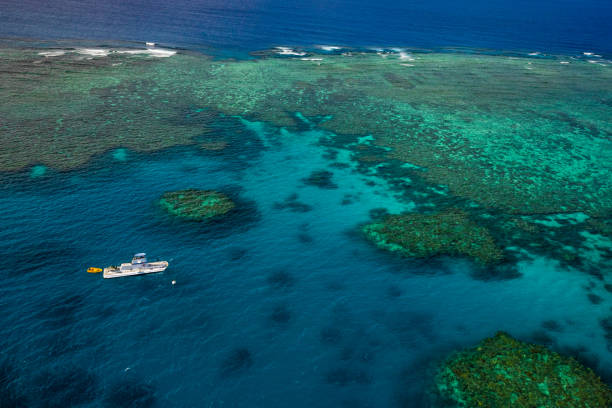 Aerial photography of the Great Barrier Reef:スマホ壁紙(壁紙.com)