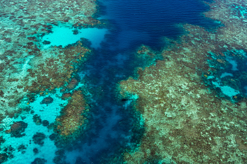 The Nature Conservancy「Aerial photography of the Great Barrier Reef」:スマホ壁紙(11)
