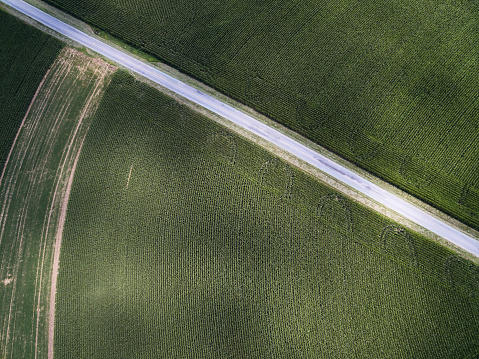 Pennsylvania「Aerial photograph of contour farming in PA」:スマホ壁紙(0)