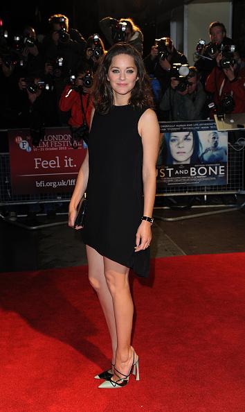 Eamonn M「56th BFI London Film Festival: Rust And Bone - Official Screening」:写真・画像(7)[壁紙.com]