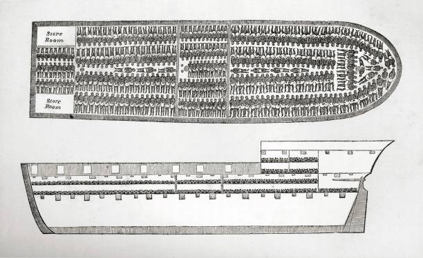 Plan Showing How Slaves Were Transported On Board A Slave Ship In The 18Th Century (Engraving). Creator: English School (18Th Century).:ニュース(壁紙.com)