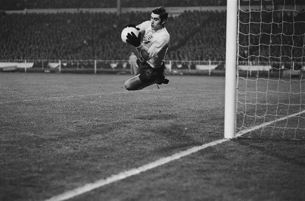 England「England Keeper Peter Shilton」:写真・画像(13)[壁紙.com]