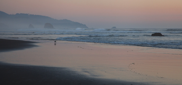 Cannon Beach「Cannon Beach at sunset」:スマホ壁紙(15)