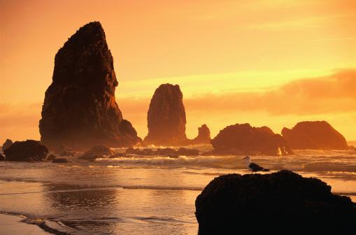Cannon Beach「Cannon Beach at Sunset」:スマホ壁紙(1)