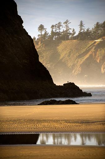 Cannon Beach「Cannon Beach Scenic Beauty」:スマホ壁紙(6)