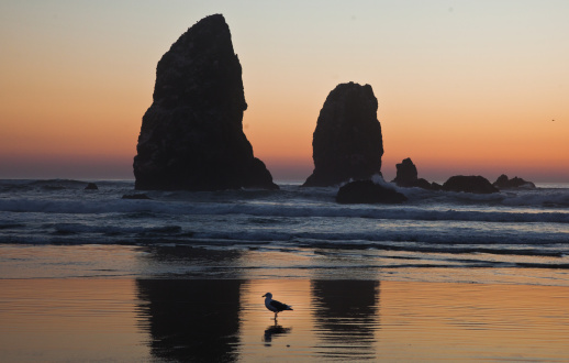 Cannon Beach「Cannon Beach, Oregon, at sunset」:スマホ壁紙(16)