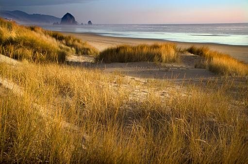 Cannon Beach「Cannon Beach Serene Landscape」:スマホ壁紙(11)