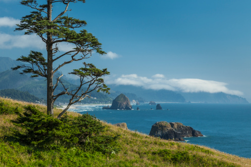Ecola State Park「Cannon Beach with Haystack Rock」:スマホ壁紙(17)