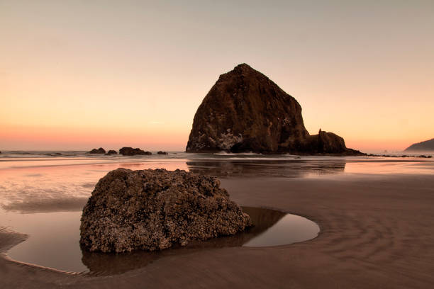 Cannon Beach at dawn in summer, Oregon, USA:スマホ壁紙(壁紙.com)