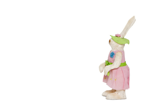 うさぎ「Side view of stuffed Bunny standing over white background」:スマホ壁紙(18)