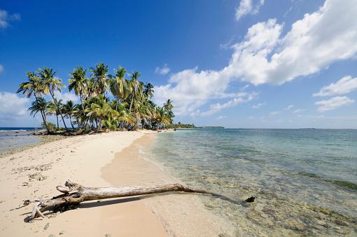 Desert Island「Panama, San Blas Islands, desert island with palms」:スマホ壁紙(16)