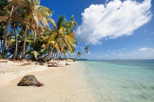 Desert Island「Panama, San Blas Islands, Cayos Los Grullos」:スマホ壁紙(13)