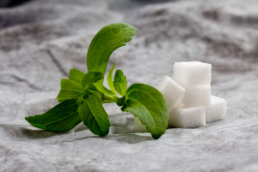 Branch - Plant Part「Stevia rebaudiana with cubes of sugar on textile」:スマホ壁紙(4)