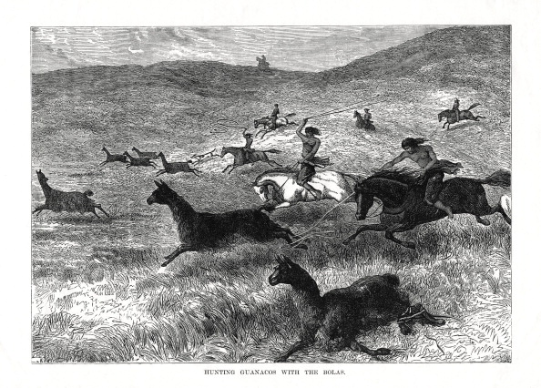 Pampas「'Hunting Guanacos with the Bolas', South America, 1877.」:写真・画像(16)[壁紙.com]