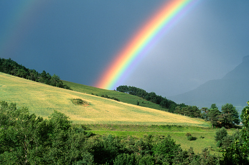 Rainbow「The end of a rainbow with a field in the foreground」:スマホ壁紙(3)