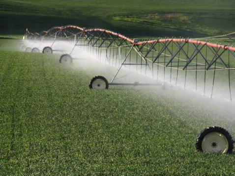 Spraying「Agricultural Sprinkler System」:スマホ壁紙(2)