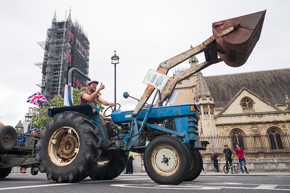 Protection「Agricultural Workers Call For The Protection Of British Farming」:写真・画像(17)[壁紙.com]