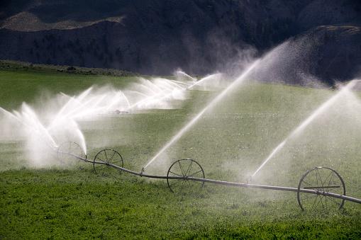 Sprinkler「Agricultural Equipment Sprinkler Irrigation Wheel」:スマホ壁紙(16)