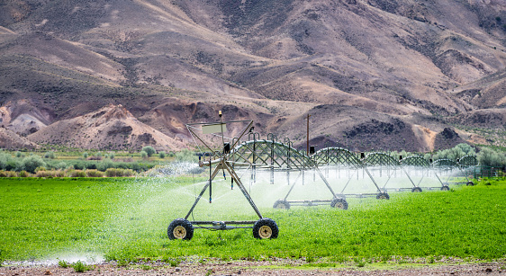 Spraying「Agricultural irrigation of a field in dry countryside」:スマホ壁紙(19)