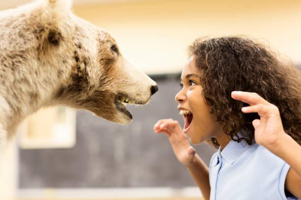 Student growling at stuffed bear in museum:スマホ壁紙(壁紙.com)