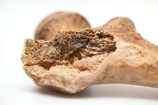 Bone「Human bone texture」:スマホ壁紙(13)