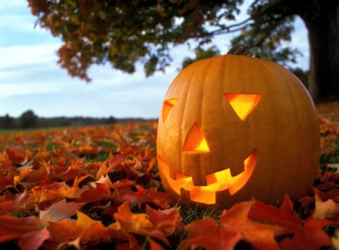 jack-o'-lantern「Pumpkin lantern on leafy grass, close-up」:スマホ壁紙(12)
