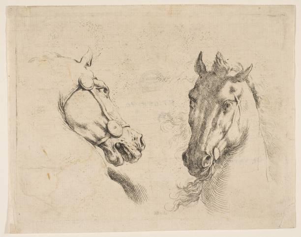 Two Horse Heads:ニュース(壁紙.com)