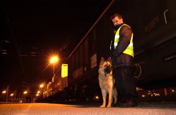 Sangatte「French Railway Police Official Searches Train」:写真・画像(19)[壁紙.com]