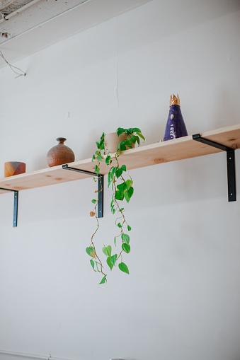 Workshop「Indoor House Plant」:スマホ壁紙(8)