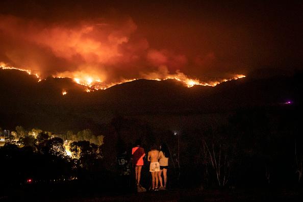 オーストラリア「State Of Emergency Declared In ACT As Canberra Braces For Increased Bushfire Threat」:写真・画像(4)[壁紙.com]