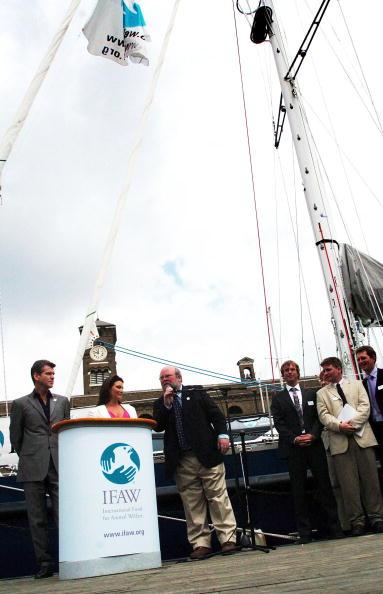 動物「Pierce Brosnan Launches Whale Research Ship」:写真・画像(3)[壁紙.com]