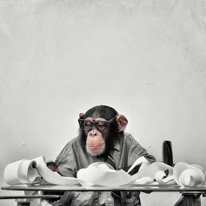 Nerd「Accountant Goofy Chimp」:スマホ壁紙(19)