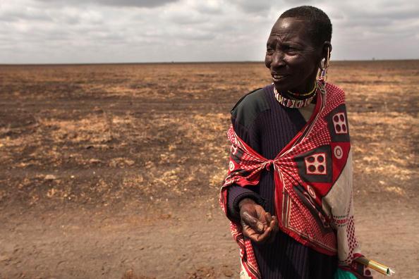 Grass Family「Maasai People Struggle As Kenya Declares Drought Emergency」:写真・画像(9)[壁紙.com]