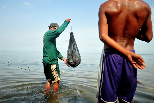 Fisherman「Filipino Fisherfolk Under Threat From Commercial Fishers & Real estate Development Plans」:写真・画像(6)[壁紙.com]