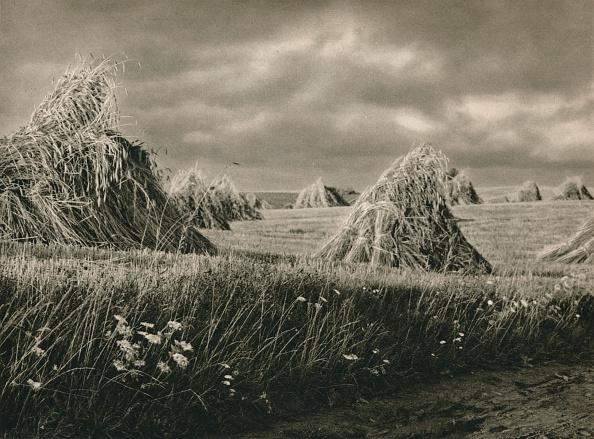 Overcast「Ernte in Mausren - Harvest in Masouria, 1931」:写真・画像(12)[壁紙.com]