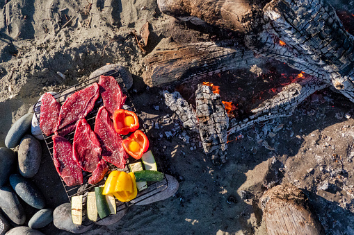 Ancient History「Food prepared for cooking over campfire on beach,Tofino, British Columbia, Canada」:スマホ壁紙(11)