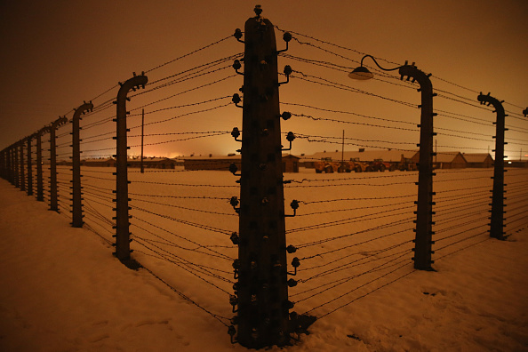 Barbed Wire「Auschwitz Prepares For The 70th Anniversary Of The Liberation Of The Camp」:写真・画像(17)[壁紙.com]