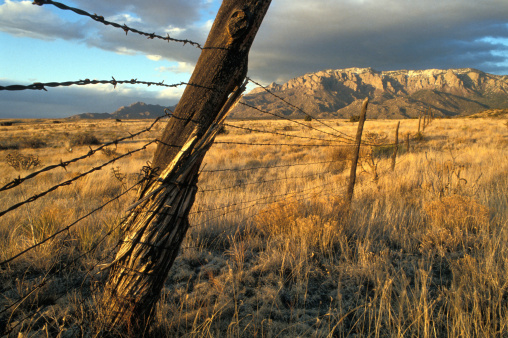 Sandia Mountains「Barbed Wire Fence」:スマホ壁紙(2)