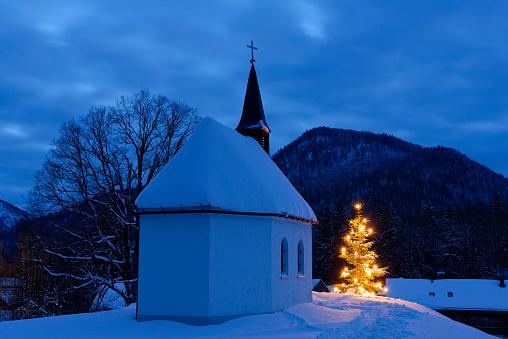 マツ科「Germany, Lenggries, chapel and lighted christmas tree」:スマホ壁紙(10)