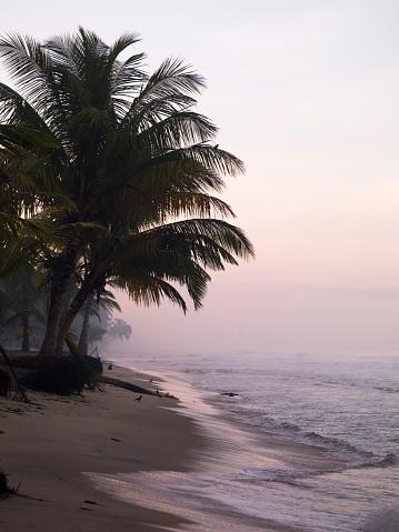 アラビア海「Arabian Sea, Kerala, India」:スマホ壁紙(14)