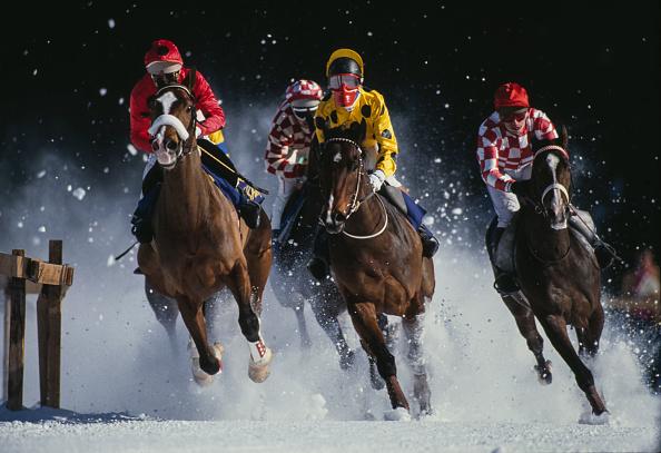 Snow「Horse Racing on Snow」:写真・画像(18)[壁紙.com]