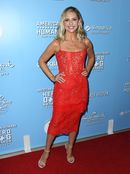Lace - Textile「9th Annual American Humane Hero Dog Awards - Arrivals」:写真・画像(15)[壁紙.com]