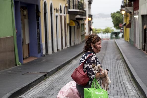 犬「Puerto Rico Prepares For Direct Hit From Hurricane Maria」:写真・画像(0)[壁紙.com]