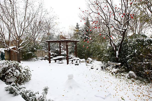 Private garden:スマホ壁紙(壁紙.com)