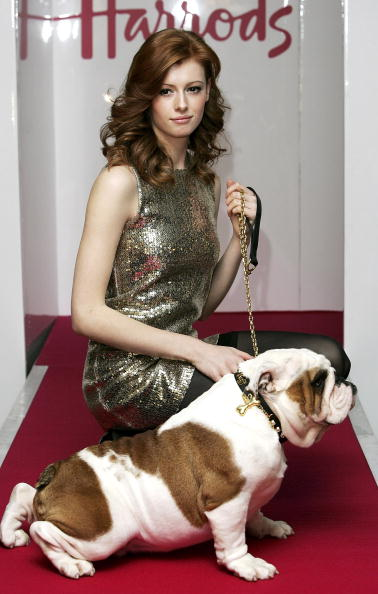 Knightsbridge「Pet-A-Porter: Stephen Webster Dog Collar - Photocall」:写真・画像(15)[壁紙.com]