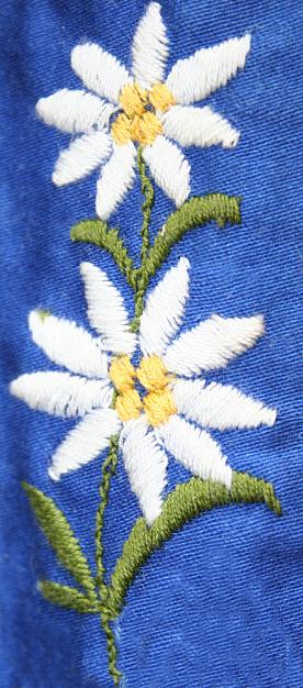 Edelweiss - Flower「Edelweiss」:スマホ壁紙(19)