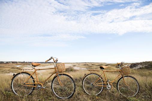 二つ「自転車近くの砂丘」:スマホ壁紙(6)