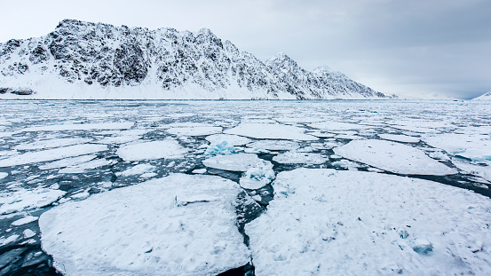 Pack Ice「fragmented pack ice, Spitzbergen, Svalbard」:スマホ壁紙(12)