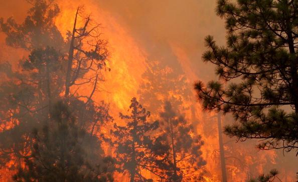 Burns - Oregon「Wildfire in Oregon」:写真・画像(18)[壁紙.com]